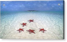 Tranquil Inspiration  Acrylic Print