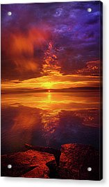 Tranquil Oasis Acrylic Print by Phil Koch