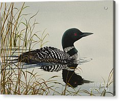 Tranquil Stillness Of Nature Acrylic Print