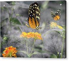 Tranquility Garden Acrylic Print