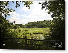 Tranquility Acrylic Print by Jeannie Burleson