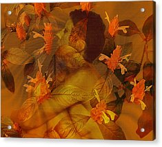 Tranquility Acrylic Print by Kurt Van Wagner