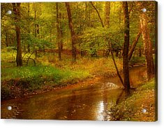 Tranquility Stream - Allaire State Park Acrylic Print by Angie Tirado