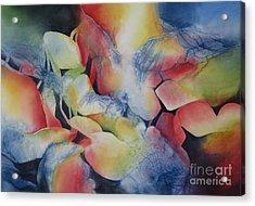 Transformation Acrylic Print by Deborah Ronglien