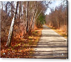 Acrylic Print featuring the photograph Transformed by Betsy Zimmerli