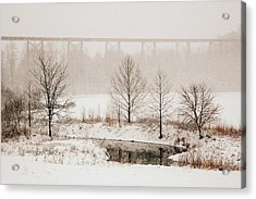 Transformed Acrylic Print by Cheryl Helms