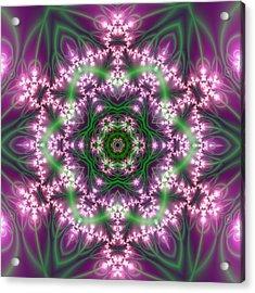 Transition Flower 6 Beats 4 Acrylic Print by Robert Thalmeier
