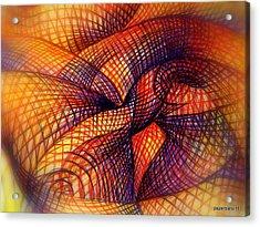 Transmutation Acrylic Print by Paulo Zerbato