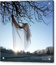 Transparent Fabric Acrylic Print by Bernard Jaubert