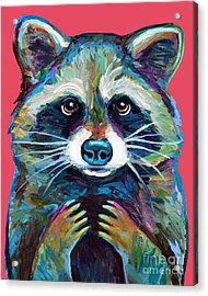 Trash Panda Acrylic Print