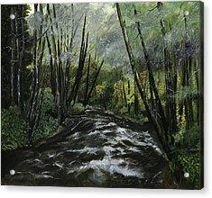 Trask River Acrylic Print
