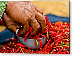 Woman Holding Red Chillies, Can Cau Market, Sapa,vietnam Acrylic Print