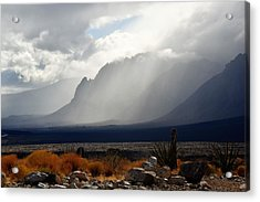 Tread Lightly Acrylic Print