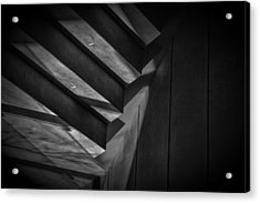Acrylic Print featuring the photograph Tread Lightly by Tim Nichols