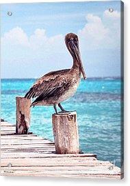Treasure Coast Pelican Pier Seascape C1 Acrylic Print by Ricardos Creations