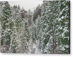 Treasure Falls Is One Of Colorado's Priceless Treasures.  Acrylic Print