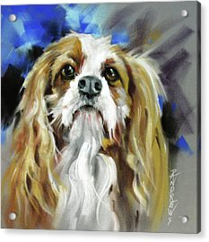 Treat Expectations Acrylic Print by Rae Andrews