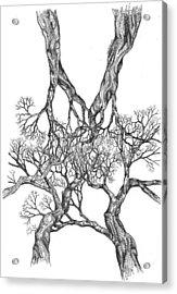 Tree 12 Acrylic Print