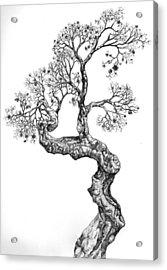Tree 14 Acrylic Print