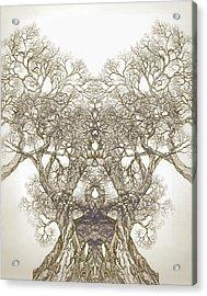 Tree 20 Hybrid 1 Acrylic Print