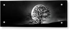 Tree And Moon Acrylic Print
