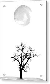 Tree And Moon Acrylic Print