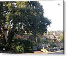 Tree At Mission Carmel Acrylic Print