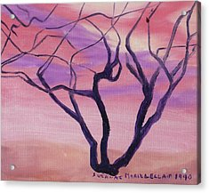 Tree At Sunset Acrylic Print by Suzanne  Marie Leclair