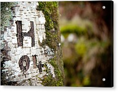Tree Bark Graffiti - H 04 Acrylic Print