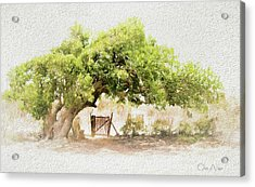 Tree By The Gate Acrylic Print