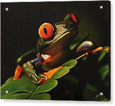 Tree Frog Acrylic Print by Maciel Cantelmo