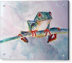 Tree Frog Acrylic Print by Mike Segura