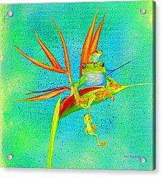 Tree Frog On Birds Of Paradise Square Acrylic Print
