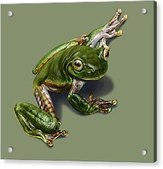 Tree Frog  Acrylic Print by Owen Bell