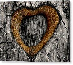 Tree Graffiti Heart Acrylic Print by Chris Berry