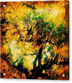 #tree #green #yellow #colourful #sc Acrylic Print