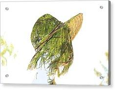 Tree Hat Acrylic Print
