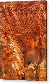 Tree In Bryce Acrylic Print