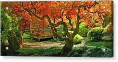 Tree, Japanese Garden Acrylic Print