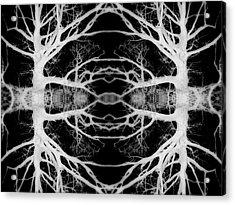 Tree Kaleidescope  Acrylic Print