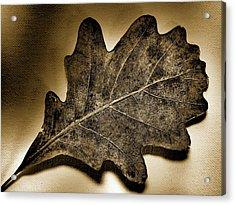 Tree Leaf -sepia Acrylic Print