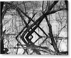 Tree Line Acrylic Print by Cynthia Ann Swan