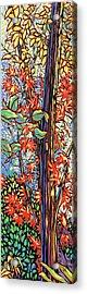 Tree Long Acrylic Print by Nadi Spencer