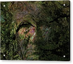 Acrylic Print featuring the photograph Tree Memories # 18 by Ed Hall