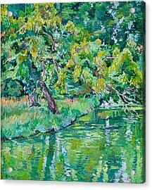 Tree Near A Pond In Lednice Castle Park Acrylic Print by Vitali Komarov