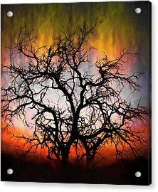 Tree Of Fire Acrylic Print