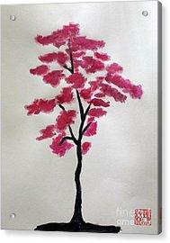 Tree Of Grace Acrylic Print