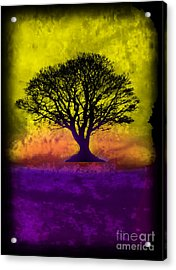 Tree Of Life - Yellow Sunburst Sky Acrylic Print by Robert R Splashy Art