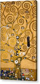 Tree Of Life Acrylic Print by Gustav Klimt