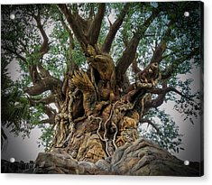 Tree Of Life Side View Close Acrylic Print